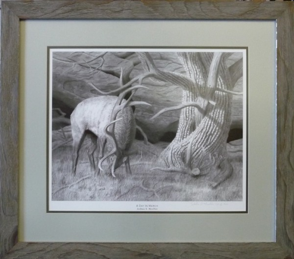 Print of an elk with double mat