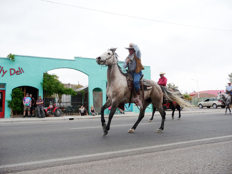 Frisky horse in the 2009 Fiesta Parade, Truth or Consequences NM